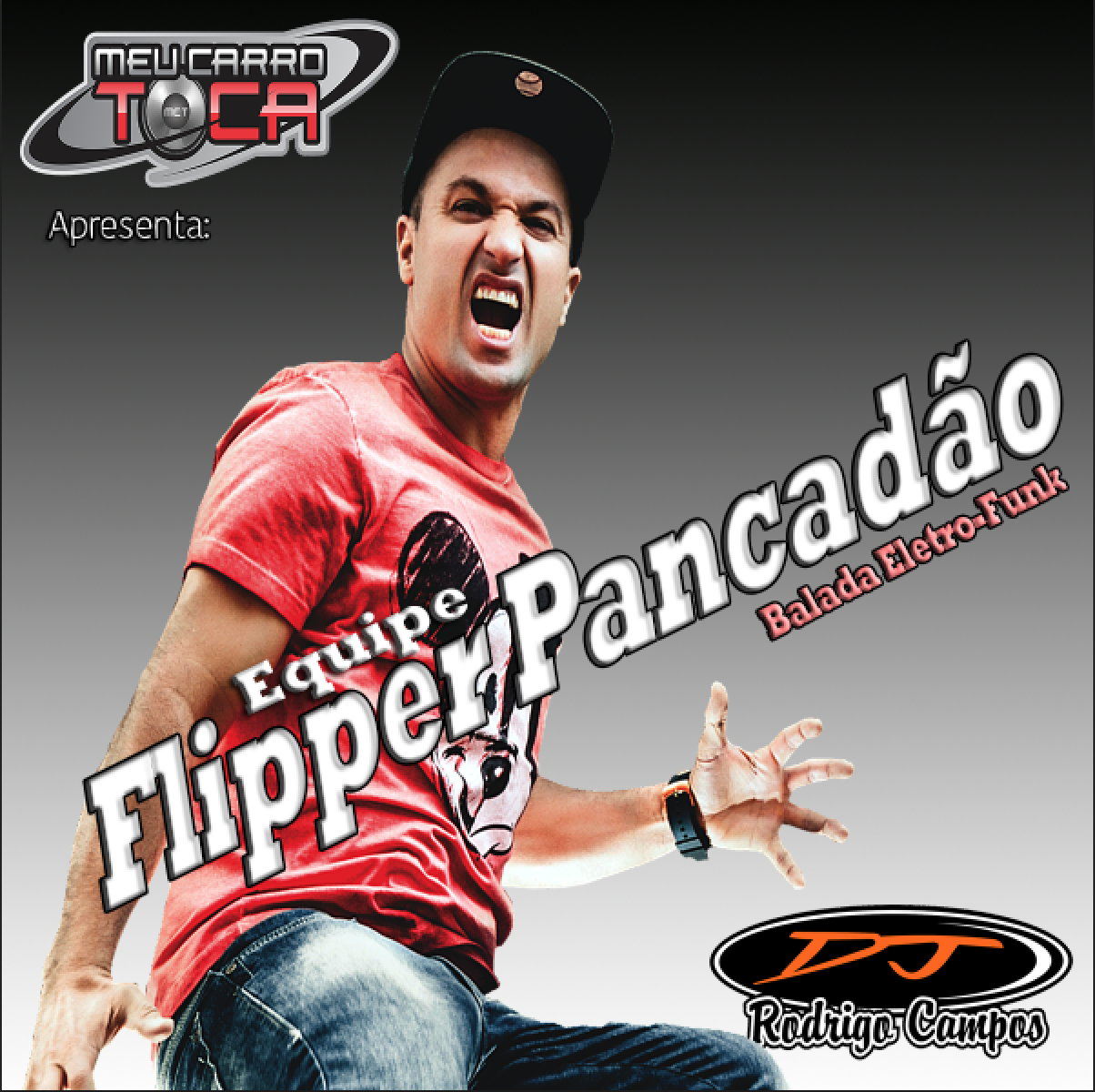 Flipper Pancadão Vol 01